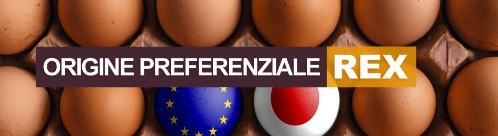 Dichiarazione di Origine Preferenziale e Sistema REX